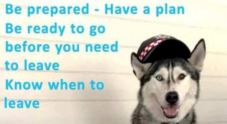 Do you have a plan for your dog in an emergency?