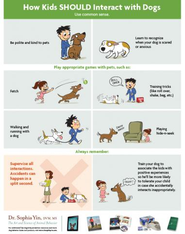 How to interact - kids and dogs